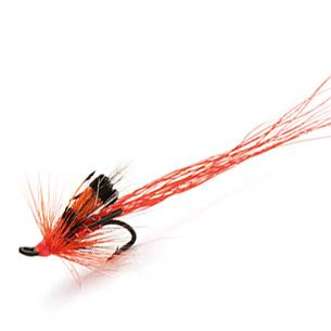 Allys Shrimp (trippel)