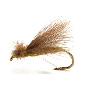CDC Caddis Adult Olive 12