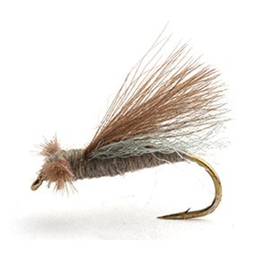 CDC Caddis Adult Gray 12