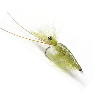 CDC Shrimp - Olive