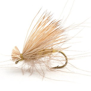 CDC Elk Caddis Yellow 12